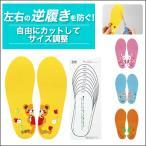 上履き インソール 左右インソール 中敷 子供用中敷き 絵合わせインソール 柄合わせ 履き間違い防止 子供用インソール