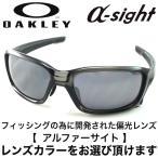 OAKLEY straight link (asian fit) GreySmoke/BlackIridium & 釣り専用 偏光サングラス アルファーサイト  α-sight oo9336-01 アルファサイト