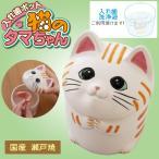 入れ歯ケース[入れ歯ポット 猫のタマちゃん]大切な入れ歯を清潔に保つ、可愛い猫の入れ歯ポット!ネコの入れ歯洗浄器で入歯お手入れも楽しく!