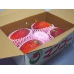 マンゴー(沖縄県産)1.5kg白箱(4〜6玉) 沖縄:JAおきなわ