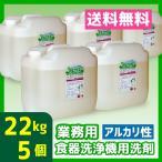 業務用食器洗浄機用洗剤 22kg 5個 アルカリ性 送料無料 食洗器 オセナS-B