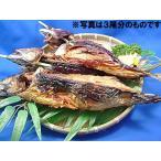 焼き鯖 1尾 姿 焼きさば1匹入 丸焼き鯖 こんがり焼鯖,焼きサバ, やき さば ※鯖 ノルウェー産