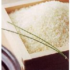 新米 R1年産 無洗米 30kg 福井県産 華越前 福井米 ハナエチゼン 無洗米 通販 福井産 はなえちぜん 送料込価格 R1年産新米