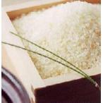 特別栽培 米 減農薬栽培米 コシヒカリ 無洗米 福井県産 減農薬米 こしひかり 20kg 入 特別栽培米 福井産 コシヒカリ R2年新米