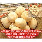 福井県大野市産 上庄の里芋 500g入 大野 皮むき済み 上庄産 里いも サトイモ を皮むき後で面倒な皮むき無しで調理可 里イモ さといも 洗い子 あらいこ 洗いこ
