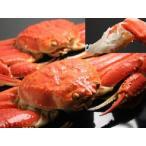日本海産 ズワイガニ ずわいがに 姿 オス LLサイズ 1尾入 ズワイ 蟹 国産 ずわい蟹 かに 日本産 ズワイカニ ずわいかに