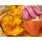 とみつ糖 蜜芋 通販 5kg入 福井県で種子島産 さつまいもの安納芋 あんのういも 品種苗を栽培し糖蜜いも みつ芋 蜜芋 みついも 薩摩芋 さつま芋