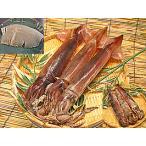 するめいか 3杯入 日本海産直送するめイカ 船上急速冷凍イカで鮮度抜群 生のお刺身・いか塩辛用にも 新鮮冷凍スルメイカ 通販