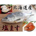 塩ます 1尾入 塩鱒 塩マス 塩 ます 塩 マス塩 鱒 ます寿し ますの寿し 鱒の寿司 の材料に