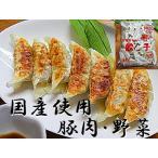 国産 ギョウザ 30個×1袋入 国産 肉 野菜使用 餃子 国産 豚肉 野菜使用 ぎょうざ 日本産 お取り寄せ 冷凍 餃子 国産豚肉 冷凍食品 肉ぎょうざ 国内産