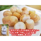冷凍 皮むき済みタイプ 里イモ 300g×15袋入 福井県大野市上庄産 里芋 さといも 里いも サトイモ 洗い子 あらいこ 洗いこ 上庄里芋 上庄さといも 冷凍品