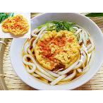 えび天ぷら うどんセット 6人前入 エビ天ぷらは1人前につき1枚付 生うどん 冷凍 麺つゆ付 生 うどん えび 天ぷら 東洋水産
