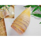 たけのこ 水煮 1袋入り タケノコ 水煮 筍 水に 国内産 竹の子 国産 日本産
