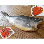 紅鮭 1尾入 生鮭 Lサイズ 生 紅さけ 紅サケ 紅シャケ ベニサケ べにさけ べに鮭 米国産 又は カナダ産 生 さけ サケ シャケ 生紅鮭