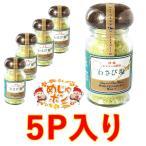 塩 シママース 沖縄 調味料 わさび塩 わさび塩 45g×5個 島マース アクアグリーン おすすめ