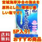 ポイント消化 食品 送料無 塩 沖縄 北谷の塩 5g×5個セット お試し おすすめ
