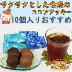 チョコレート 塩 ココア クッキー 沖縄 ファッションキャンディ塩ここあ1袋