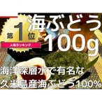 海ぶどう 沖縄 久米島産海ぶどう(100g) 送料無料 海洋深層水 で有名な久米島産海ぶどう100%