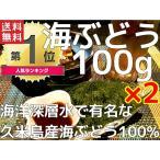 海ぶどう 沖縄 久米島産海ぶどう(100g)×2個セット 海洋深層水 で有名な久米島産海ぶどう100% お土産 送料無料 おすすめ