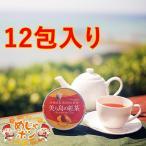 マンゴー フレーバー (2g×12包)×1 美ら島の紅茶  仲善
