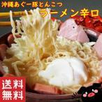 沖縄 とんこつ ラーメン ナンポー沖縄あぐー豚とんこつラーメン辛口86g2袋セット