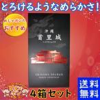 お菓子 沖縄 お土産 首里城 ベイクドショコラ  20個入り×4箱 豊上製菓 新食感のチョコレートスイーツ とろけるようななめらかさ