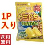 グミんちゅ 沖縄パイン味 40g ×1袋 オキコ