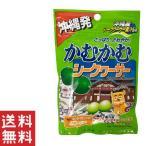 ポイント消化 送料無 食品 かむかむ 沖縄 シークワーサー 30g×1袋 オキコ ビタミンC おすすめ