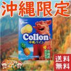 ポイント消化 送料無 食品 沖縄限定 オキコ 沖縄パインコロン 単品1箱セット お試し