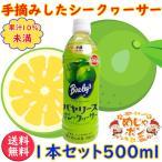 ショッピング500ml シークヮーサー PET500ml ×1本 沖縄バヤリース