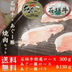 石垣牛 あぐー豚 焼肉セット600g 焼肉 ギフト お土産 送料無料 いしがきビーフ本舗