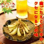 島らっきょう 塩漬け おつまみ (30g)×10袋 沖縄県産品うちなー自慢 漬物 お土産  おすすめ
