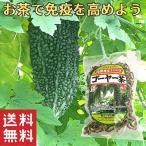 沖縄県産健康茶 種入りゴーヤー茶 スライス(70g)