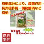 沖縄県産健康茶 ユーカリ茶(100g)