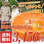 ちょっと 訳あり 有田みかん 蜜柑 10.0kg 自宅用 訳アリ 送料無料 ミカン 10kg 箱買い 産地直送