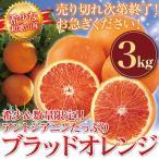 ブラッドオレンジ 和歌山 産地直送 3kg オレンジ 柑橘系 箱買い (北海道・沖縄・一部離島+500円)
