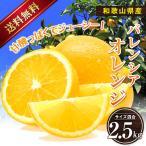 送料無料【国産】和歌山産  バレンシアオレンジ2.5kg【ギフト用】