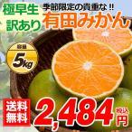 有田 訳あり みかん 5kg 無選別 酸味 すっぱい 極早生蜜柑 有田みかん 5.0kg 箱買い 産地直送