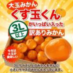 大玉 みかん 10kg くす玉くん 直送 訳あり 安い 有田 みかん 蜜柑 送料無料 箱買い 自宅用 糖度