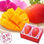 お中元 ギフト フルーツ 果物 宮崎マンゴー 内祝い お祝い 誕生祝 御礼 71095