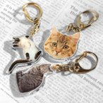 キーホルダー 猫のお写真で作るキーホルダー ペット写真 ペットメモリアルグッズ 名入れ 敬老の日 プレゼント ギフト
