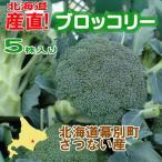 memoryart_sanchoku003