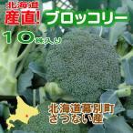 memoryart_sanchoku004