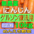 無農薬人参(クール便)(送料無料)食事療法専門 ゲルソン療法に最適 有機栽培農家の人参(単品10kg) 抜群の糖度(特級品)