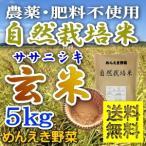≪送料無料≫【完全無農薬・無肥料】《自然栽培米》【食事療法専門】28年産 無農薬ササニシキ玄米【単品5kg】