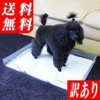 犬のトイレ クリアレット トレー&シーツストッパー セット(ワイドサイズのシーツ対応)(同梱不可)(北海道・沖縄・離島は送料別途)