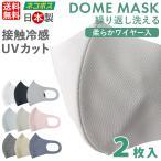 マスク 日本製 洗える ワイヤー入 2枚入 立体マスク 3D 吸水速乾 吸汗速乾 男女兼用 個包装 ふつうサイズ ノーズワイヤー 大人用 軽量 通気性 花粉症 ほこり