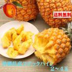 沖縄県産 ボゴールパイン(スナックパイン)2〜3玉 (約2kg) 【発送4月下旬〜8中旬】パイナップル  一つづつ摘まんで食べる新種パイン  芯まで甘い