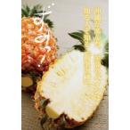 【発送6〜8月】いよいよ出荷開始開始【贈答用】パインの王様・沖縄産ゴールドバレル1玉入り(約2〜2.5kg)