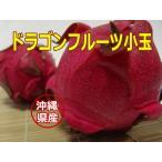 沖縄県産ドラゴンフルーツ(赤) 小玉1個(@200g前後)【発送7〜12月】